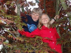 Auch bei Neni im Garten kann man auf Bäume klettern...